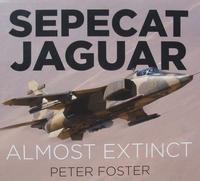 Sepecat Jaguar - Almost Extinct