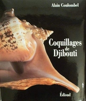 Coquillages de Djibouti